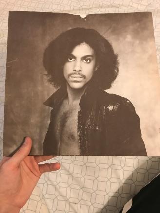 Prince inner sleeve
